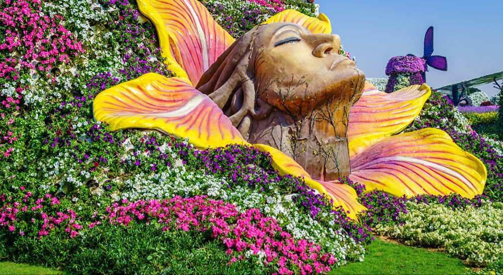 Dubai Miracle Garden Attractions, Timing, Ticket Price