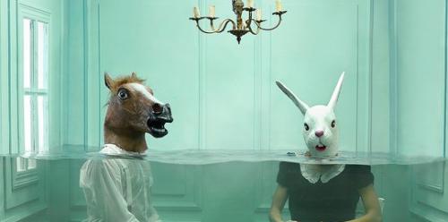 Queste foto surreali sono state realizzate senza alcun ritocco digitale