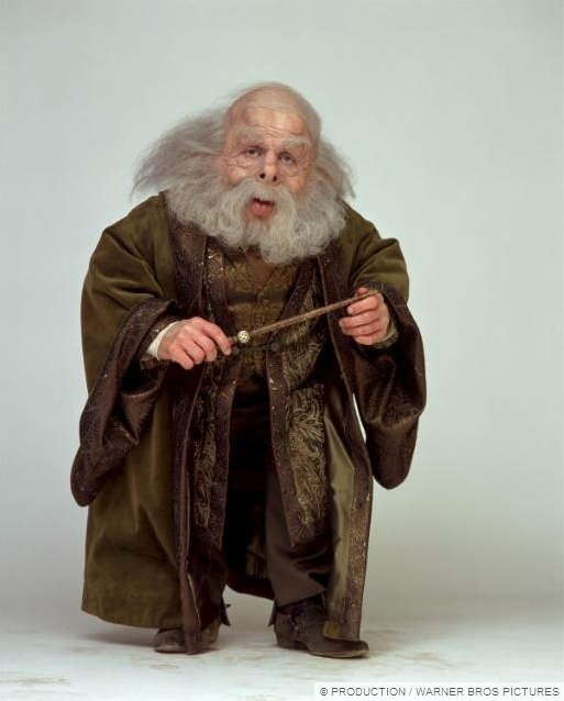 Images Of Dumbledore S Army Harry Potter Wiki First Harry Potter Harry Potter Characters
