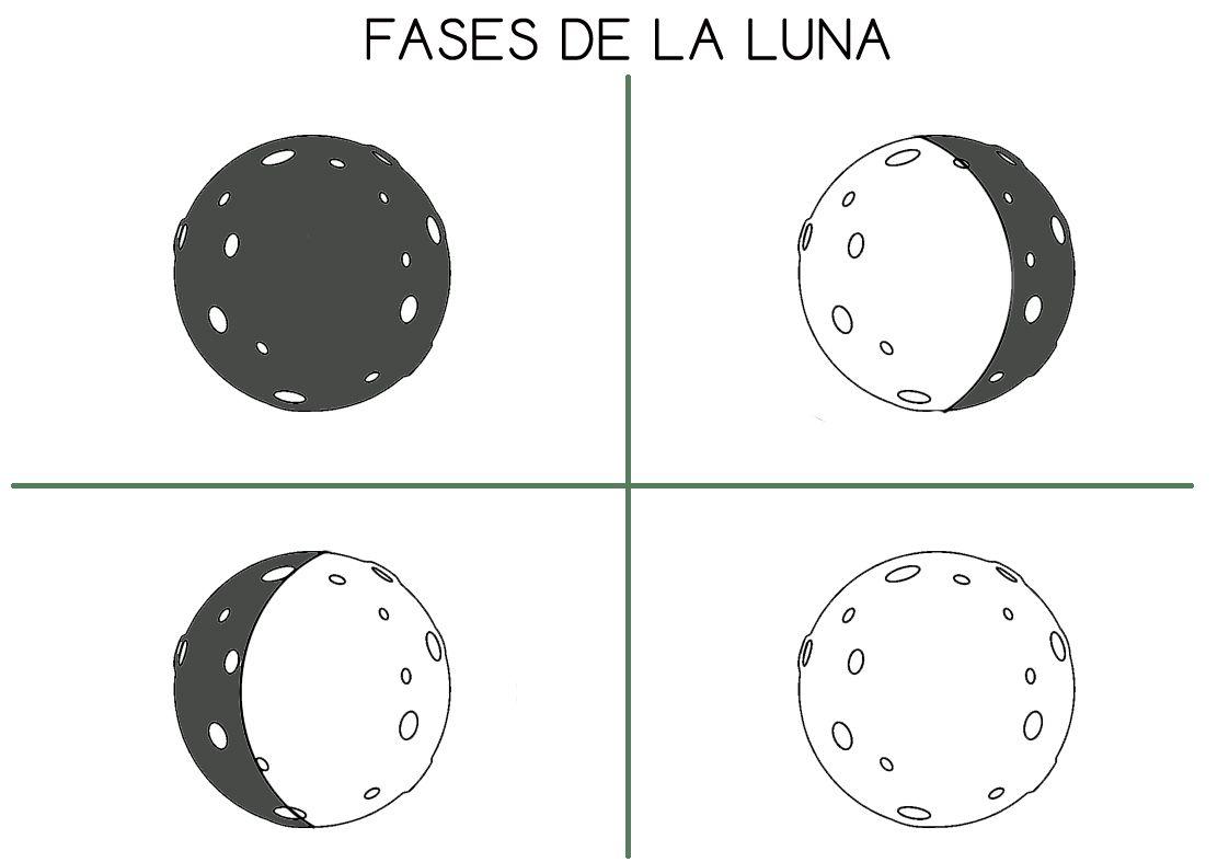 Fases Principales De La Luna Para Colorear Recortar Y