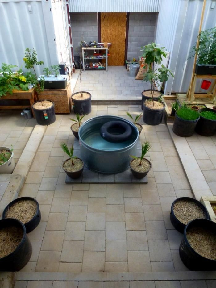 A garden off the grid in West Texas the amazing story of a one