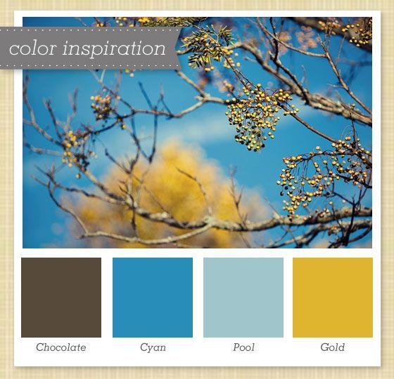 Light Yellow Paint Color Palette: Brown, Blue And Gold Color Palette
