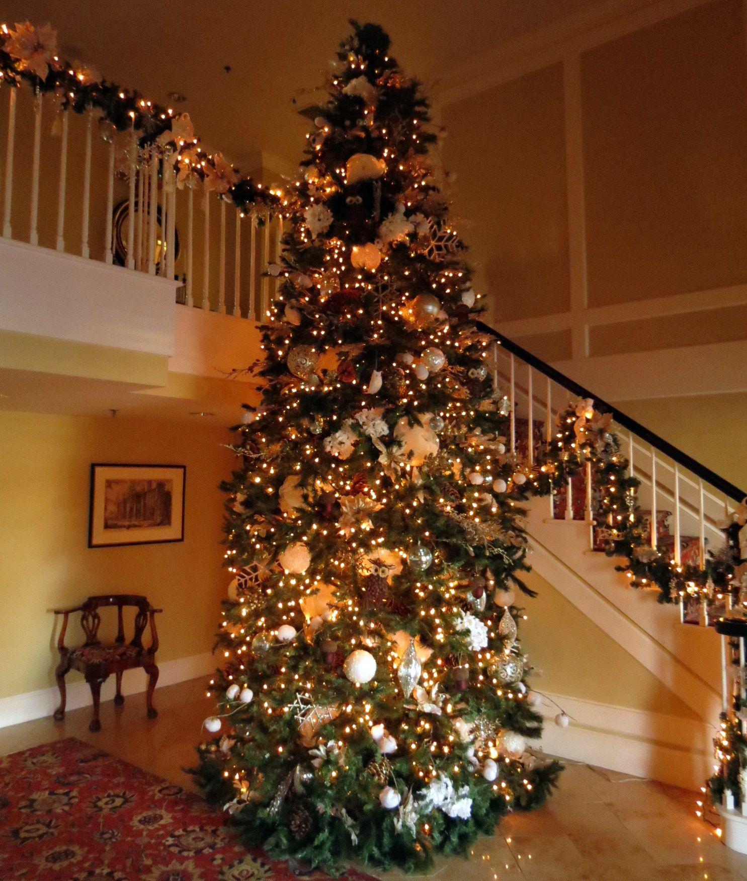 Grand Christmas Tree: Grand Foyer Christmas Tree @EvansvilleCountryClub