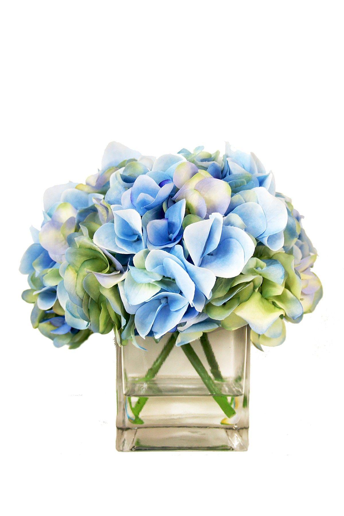 Pastel Blue Hydrangea Stuff I Like Pinterest Hydrangea