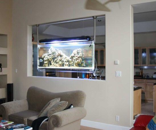 creative small fish tank look ma no tables the hanging aquarium fish in 2019 wall. Black Bedroom Furniture Sets. Home Design Ideas