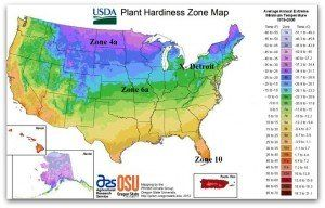 Interactive USDA Plant Hardiness Zones Web Map Allows the Use of Zip Codes to Identify Zone. Image by USDA.