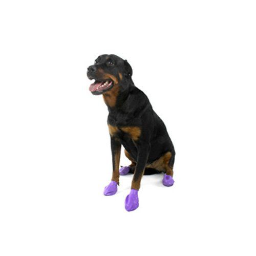 Pawz Rubber Dog Boots Large Purple Dog Boots Expensive Dogs Dogs