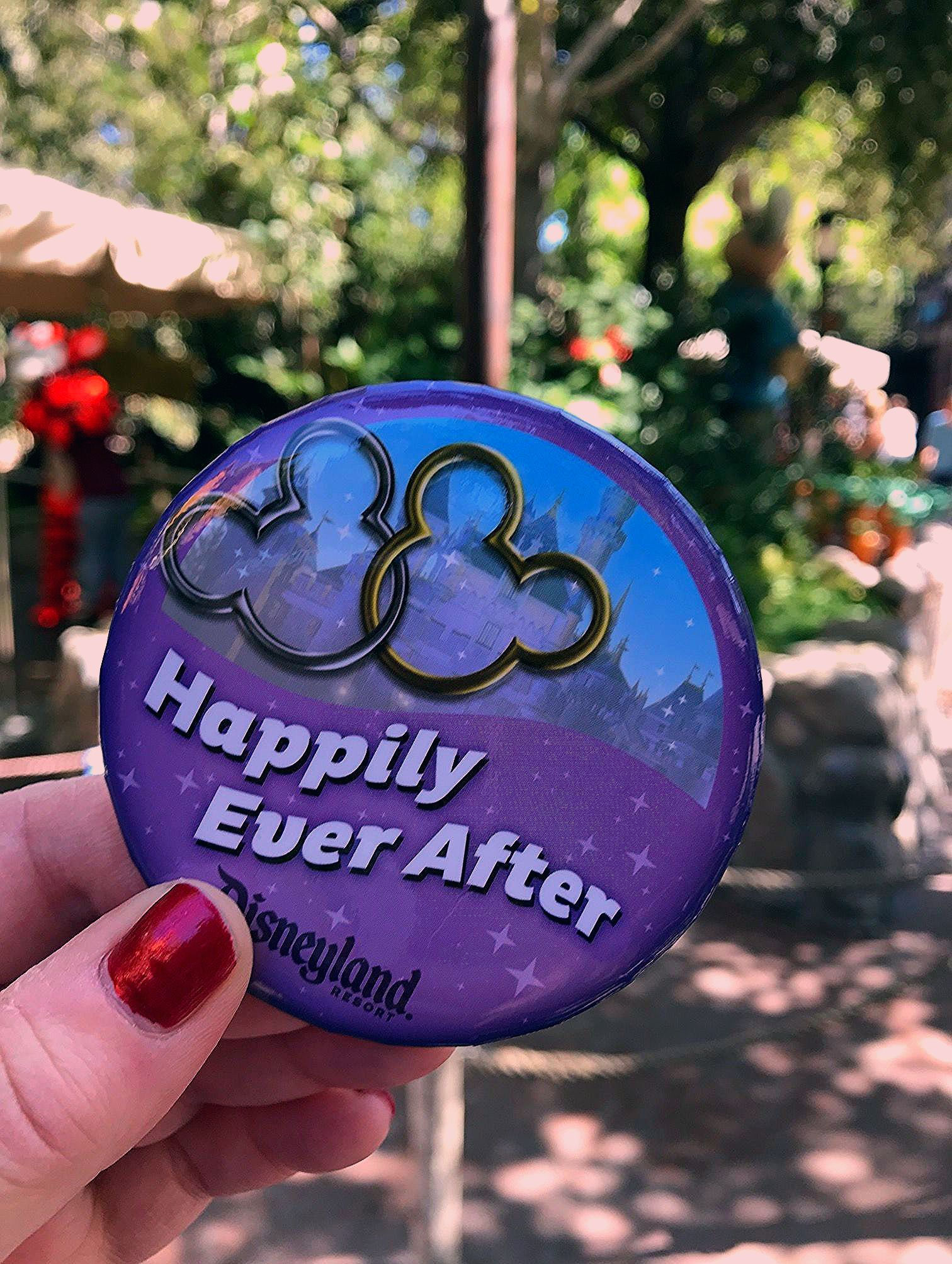 Photo of Essential Disneyland Tips for First Time Visitors – The Cactus Chronicles
