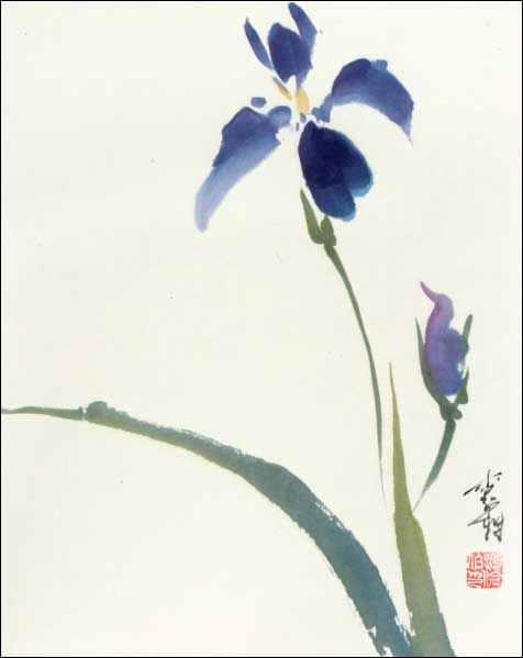 Iris Spontaneous Jpg 476 599 Pixels Chinese Brush Painting Iris