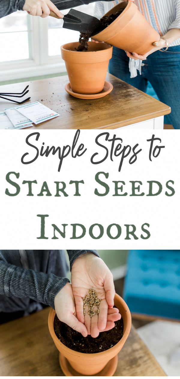 Starting your seeds indoors has many benefits and helps increase your chances of a successful vegetable garden. These informative tips will help get you started. your seeds indoors has many benefits and helps increase your chances of a successful vegetable garden. These informative tips will help get you started.