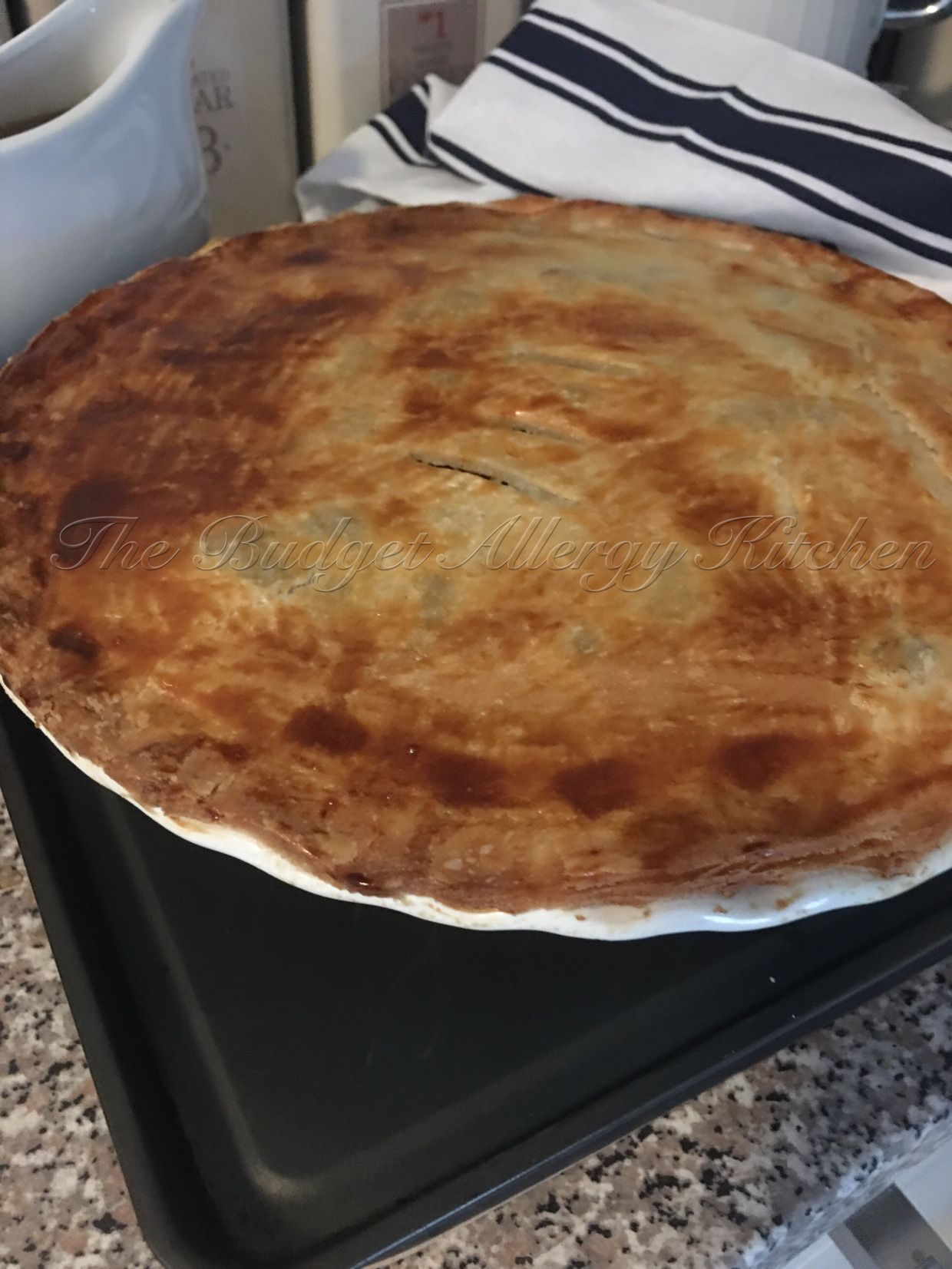 Steak and Ale Pie. Gluten, Dairy, Soya and Egg free. (With ...