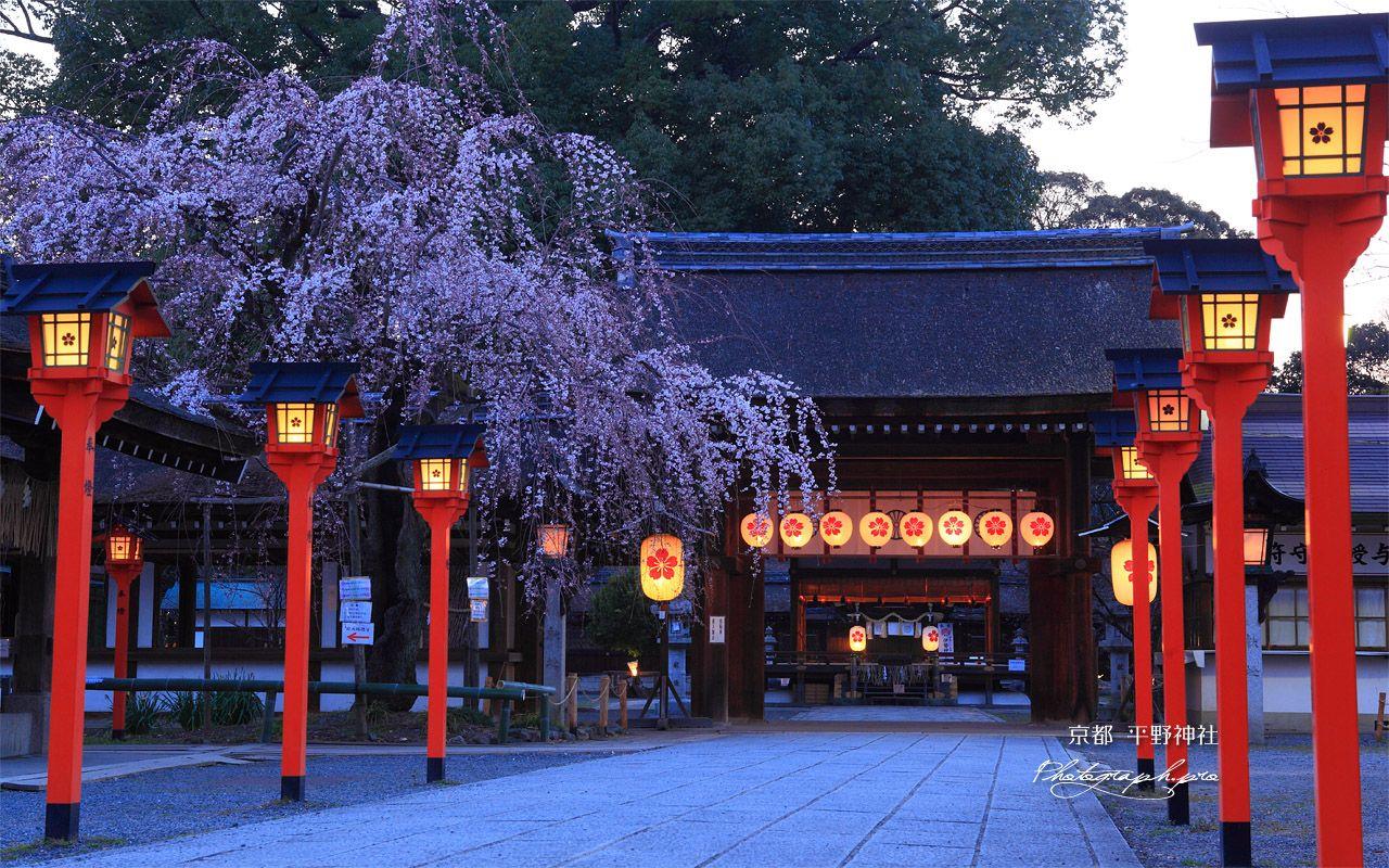 平野神社 京都市北区 Hirano Shrine Kita Ku Kyoto City Japan
