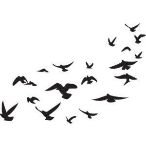 Fundo Branco Com Detalhes Para Photoscape Pesquisa Google Imagens Png Tumblr Passaros Voando Imagens Com Fundo Branco