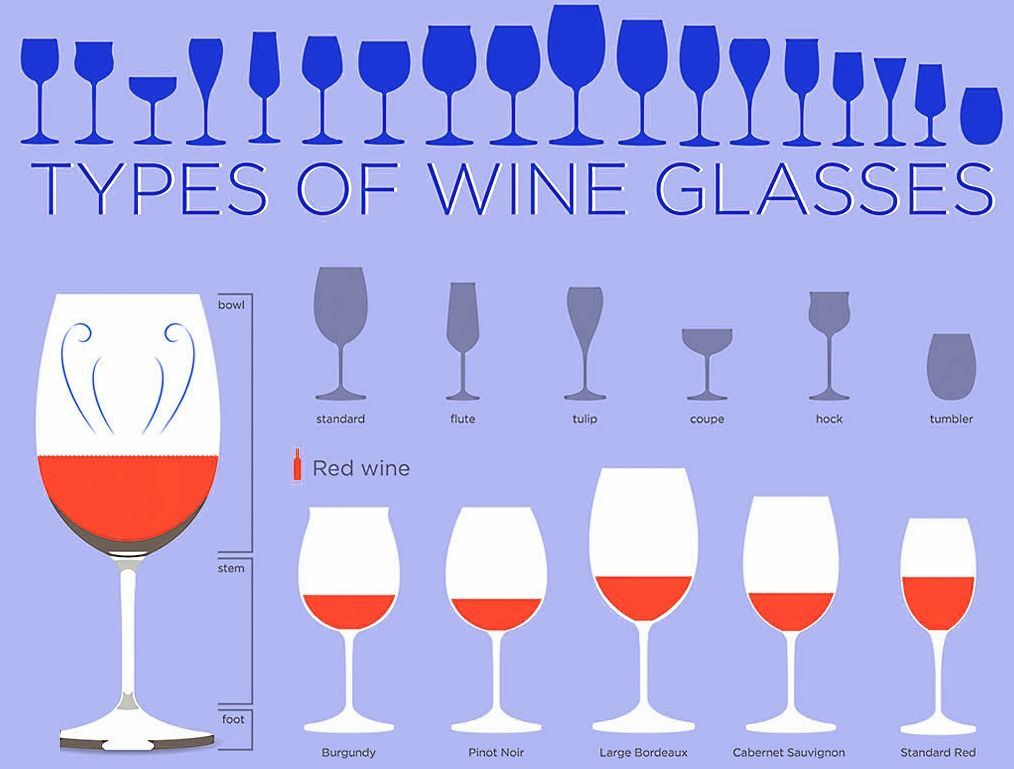 Wine Glass Shapes Example 2 Funny Wine Glasses Types Of Wine Glasses Wine Glass Sizes