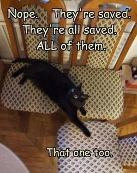 my chairs.....