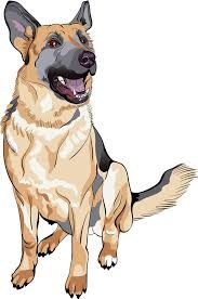 Funny German Shepherd Cartoon Picture Dog Sketch German