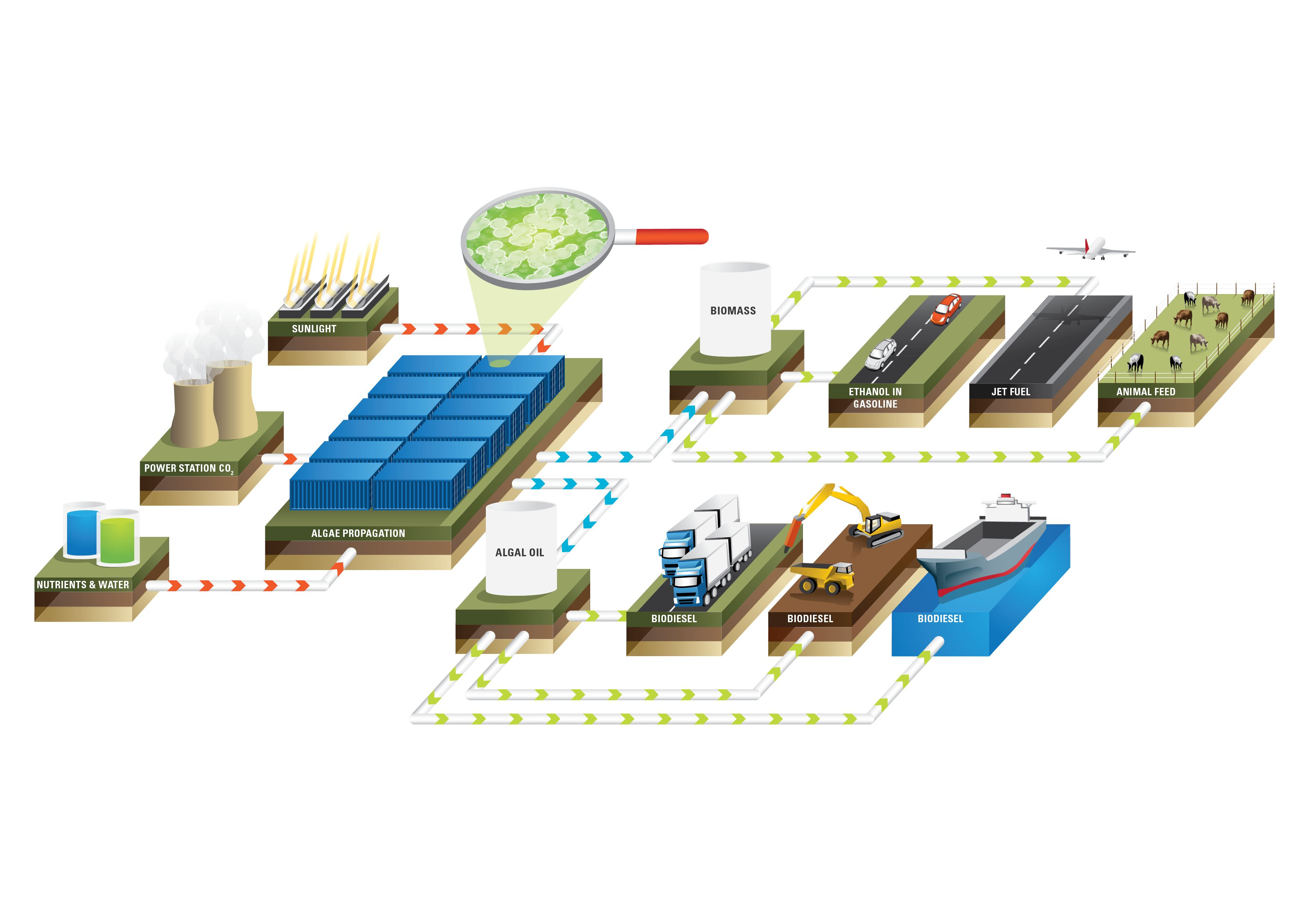 Process diagram of Algae.Tec biofuel | Biofuels - Algae.Tec ...