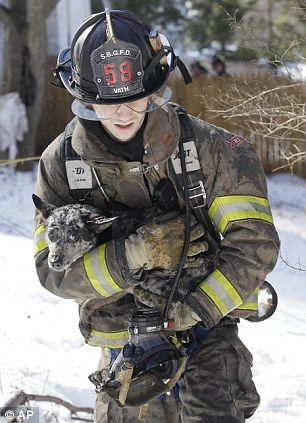 South Blooming Grove firefighter, Erick Vath, clutches a dog rescued from a New York house fire.