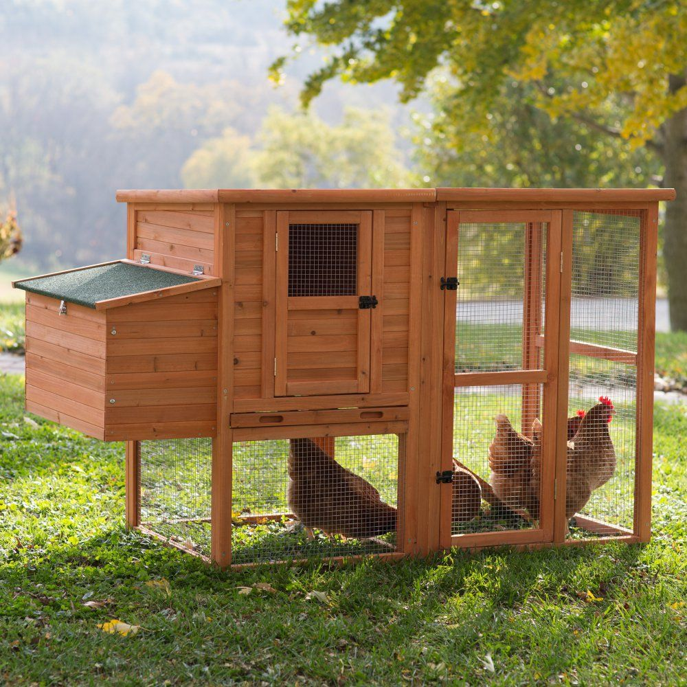 Boomer & George Nesting Quarters Chicken Coop at Hayneedle