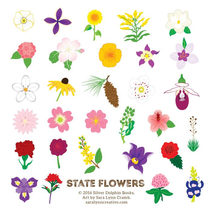 """State flowers from """"Sticker Road Trip: 50 States""""."""