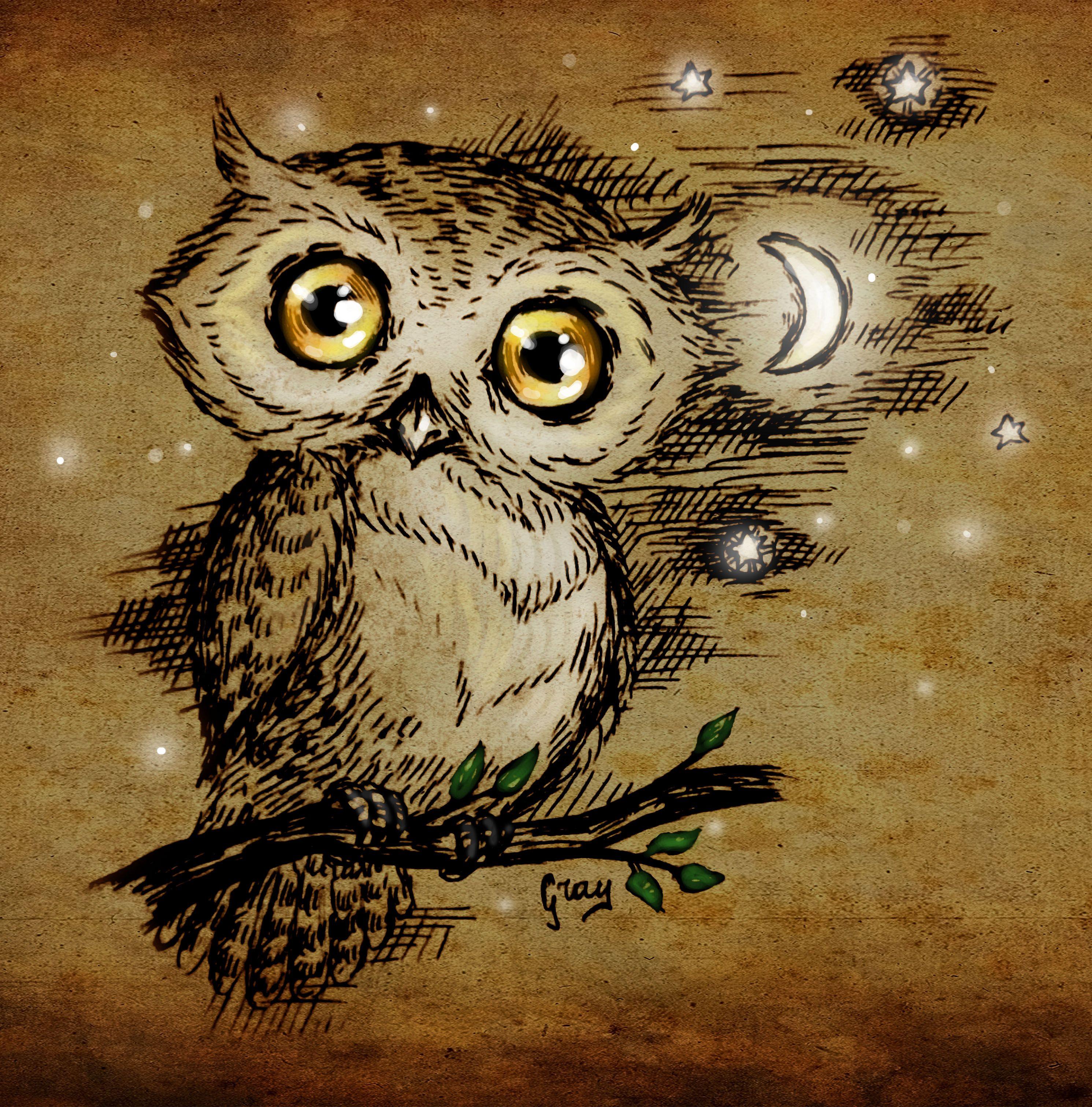 Owl by Irrisor-Immortalis.deviantart.com on @deviantART