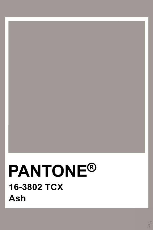 Pantone Ash