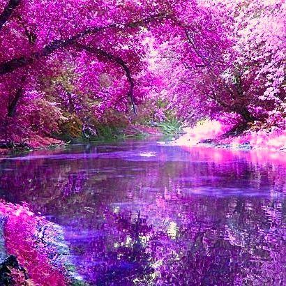 Purple Profile Poem Google Search Nature Amazing Nature Beautiful Landscapes