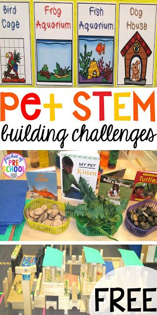 Blocks Stem Center Building Pet Homes A Freebie Pocket Of Preschool Preschool Activities Preschool Stem Pets Preschool