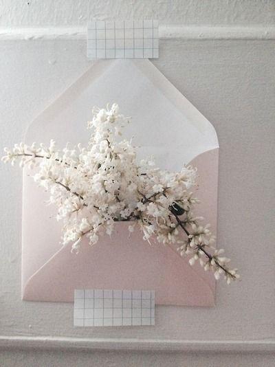 #flowerletter #inthemorning