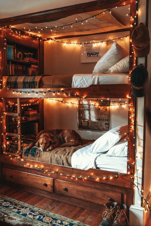 Photo of Love Life –  Replicate using bookshelf and bunk open at bottom when she's a bi…