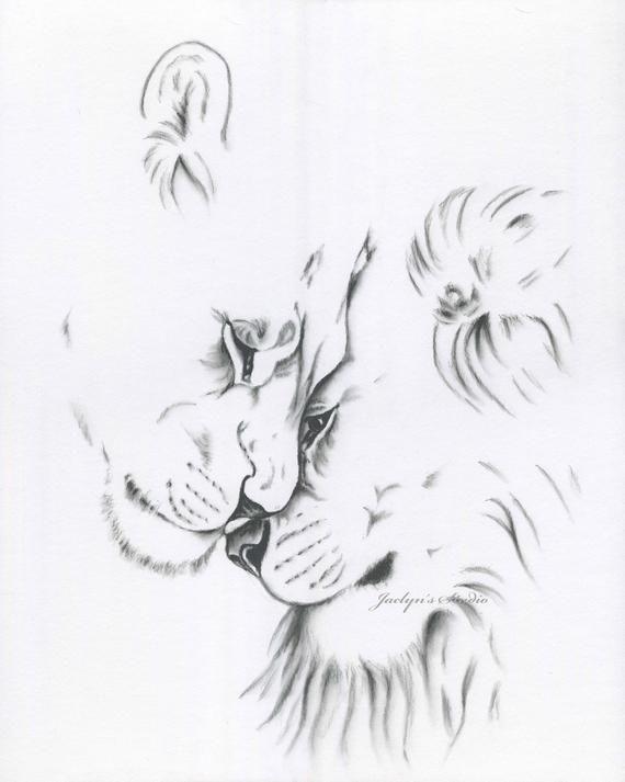 Charcoal Lion Drawing Print, Lion Sketch, 8″x10″ Lion Art, Charcoal Drawing, Lion Charcoal Sketch, Lioness & Lion, Lion Love, Lions Art