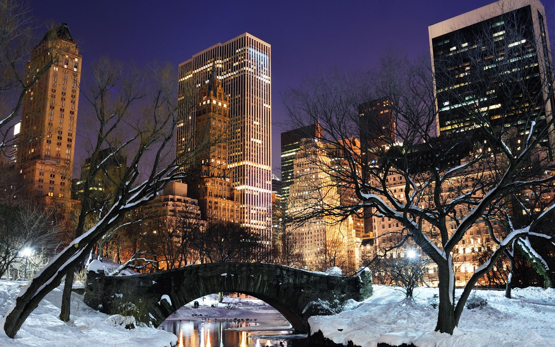 NYC Winter in Central Park #teatime https://www.facebook.com/CelestialSeasonings/app_593554104036964