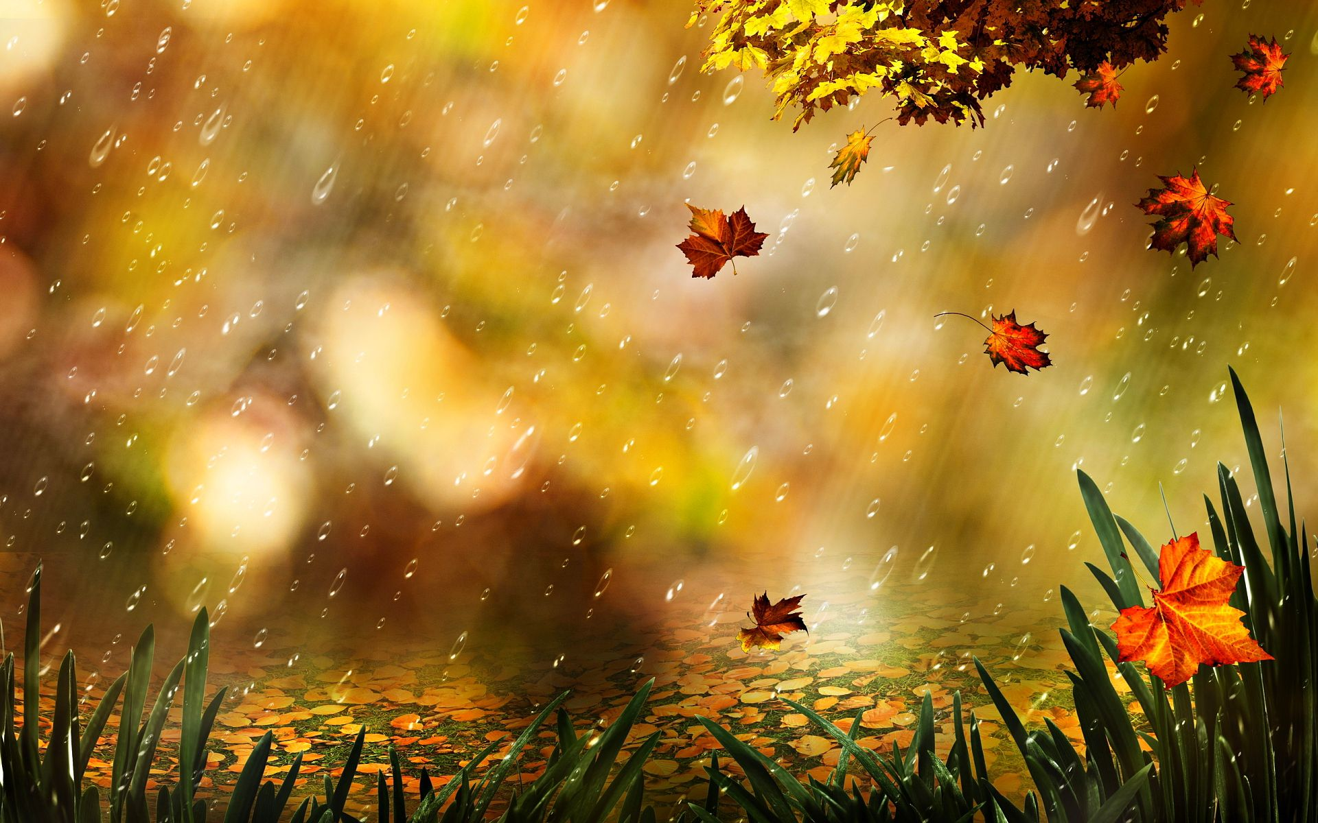 Autumn Rain Desktop Background Wallpapers Hd Free 574271 Leaf Artwork Autumn Rain Rain Wallpapers
