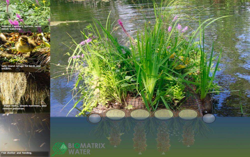 Floating Islands - Biomatrix Water   Floating garden ...