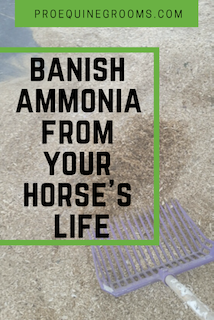 f6f8b86eb90ccdea1965e42e818a7a5b - How To Get Rid Of Ammonia Smell From Body