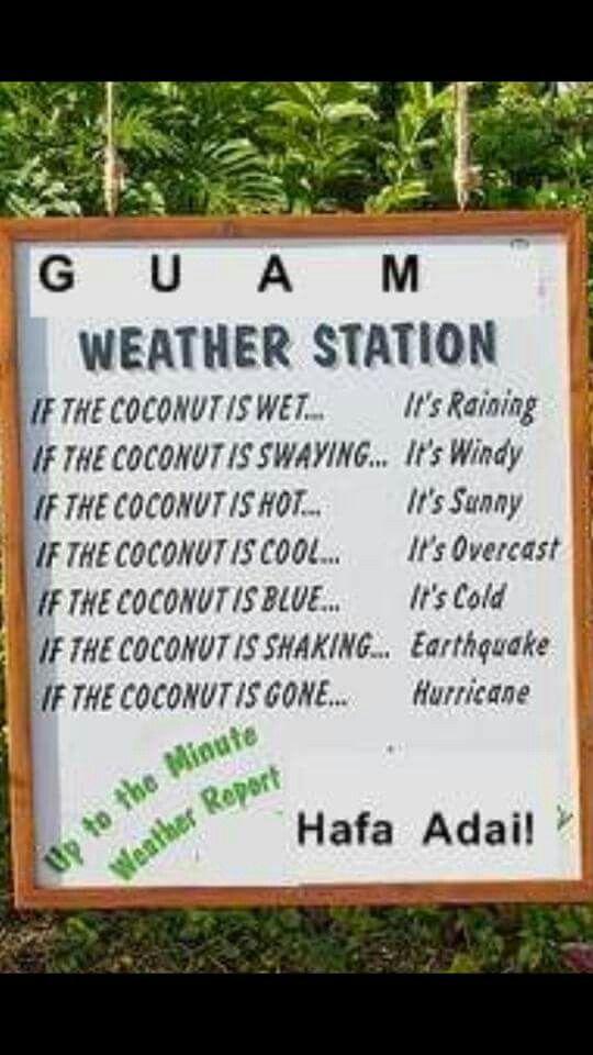 Coconut Weather Guam Island Life My Island