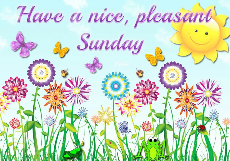 Have A Nice, Pleasant Sunday...