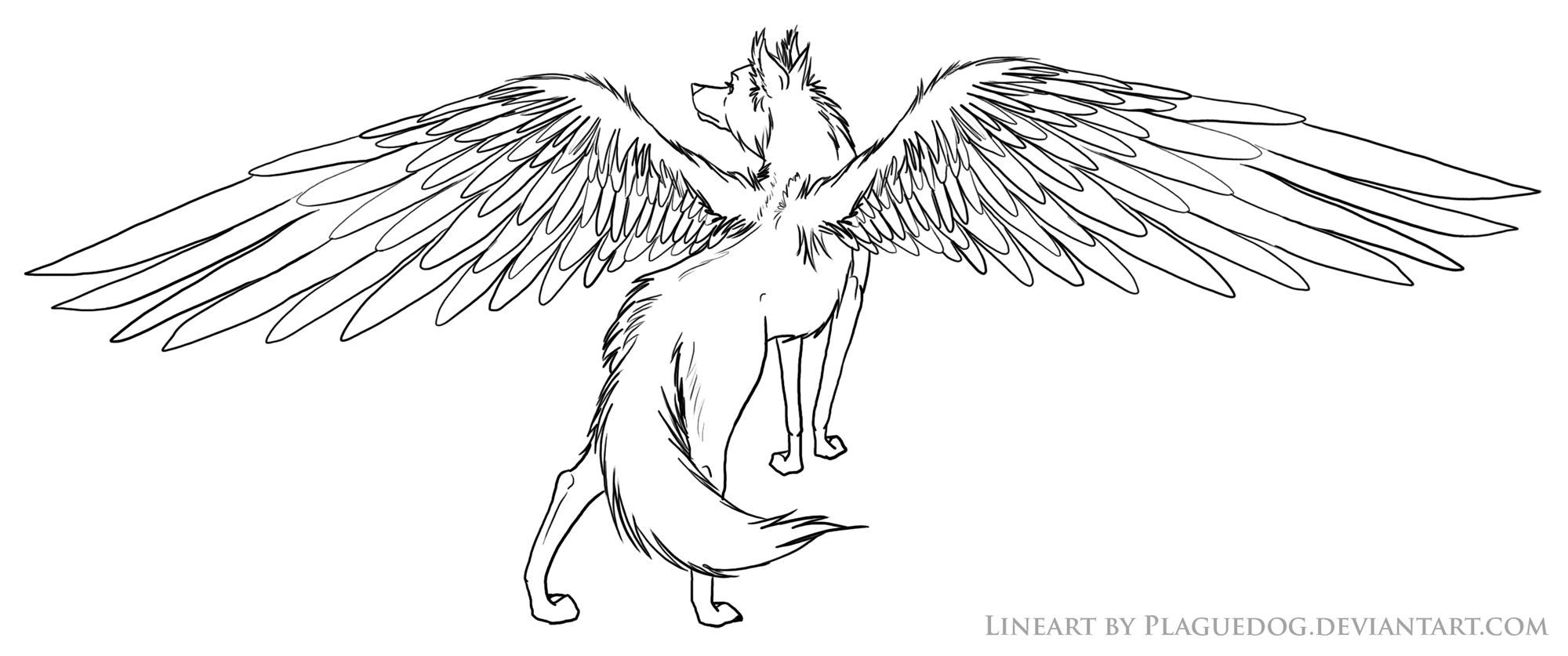 Winged Wolf Coloring Pages Anime Wolf Wolf Colors Cat Coloring