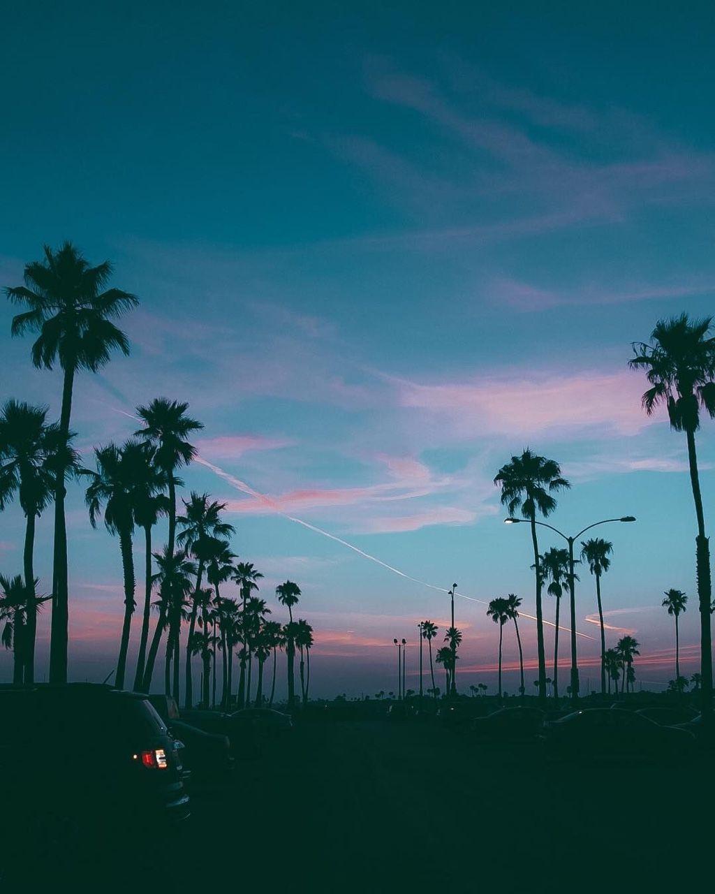 Good Morning South Beach 🌴🌴🌴