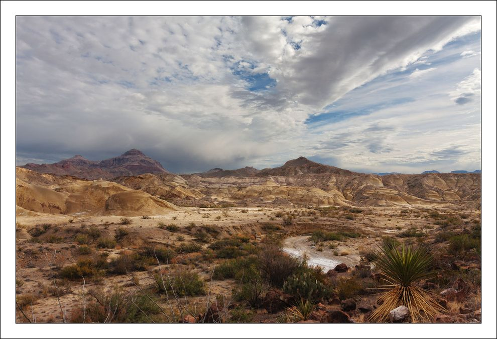 The Chihuahuan Desert in West Texas. | 35 Gorgeous Photographs From Deep In The Heart Of Texas