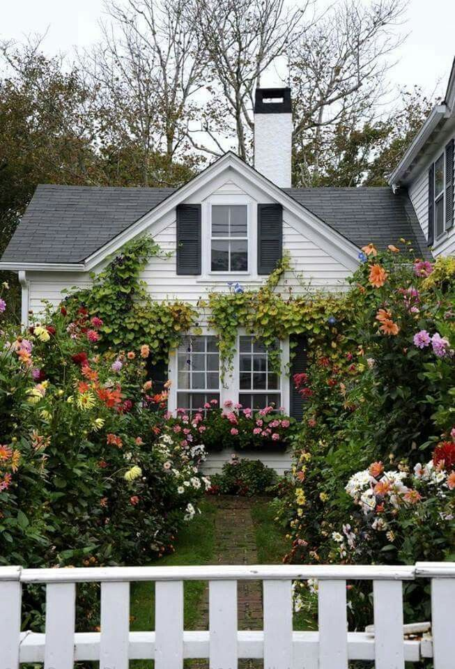 I Would Hang Out There All Day Dream Cottage Cottage Homes House Exterior