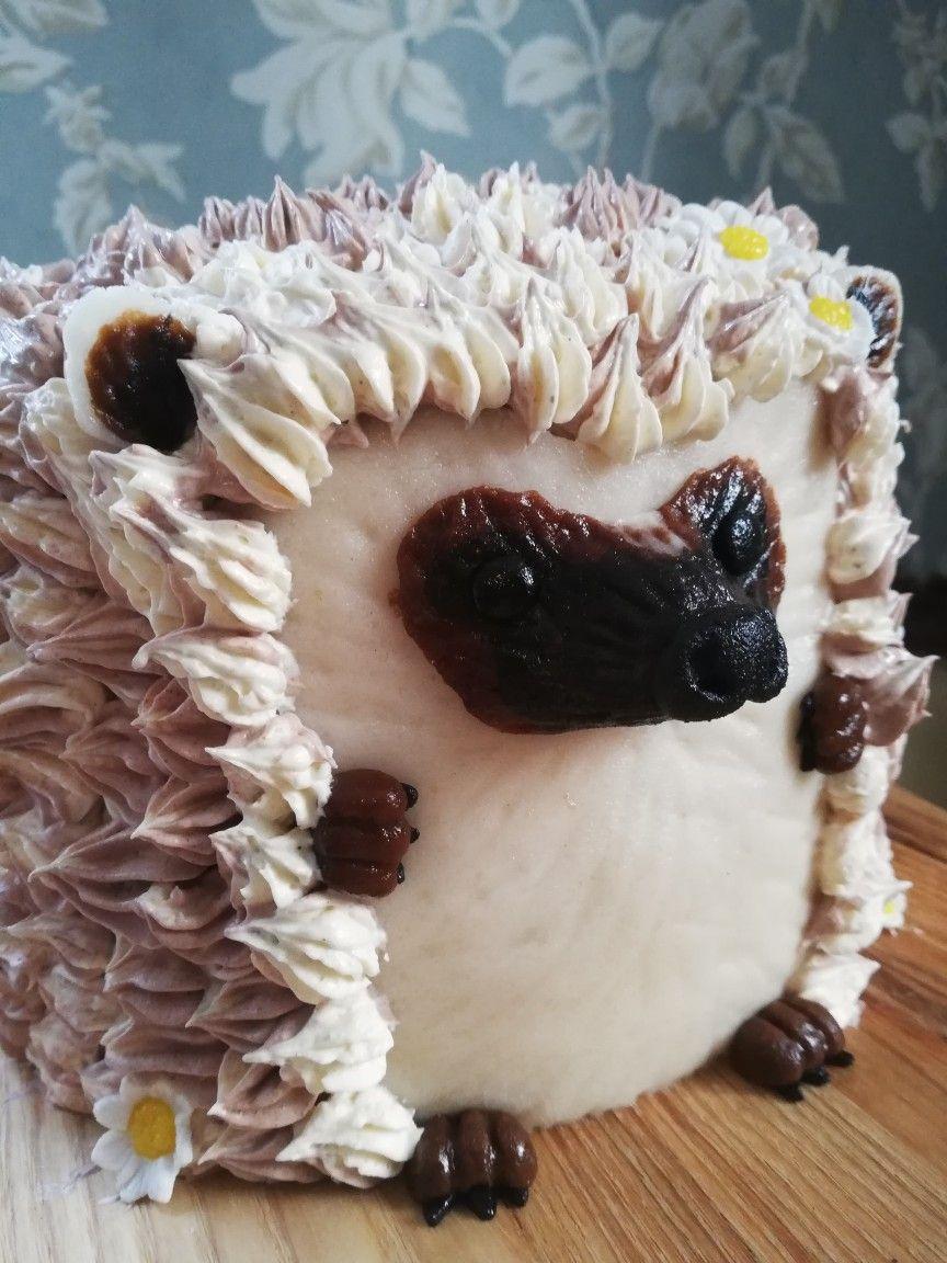 Hedgehog cake hedgehog cake sonic the hedgehog cake