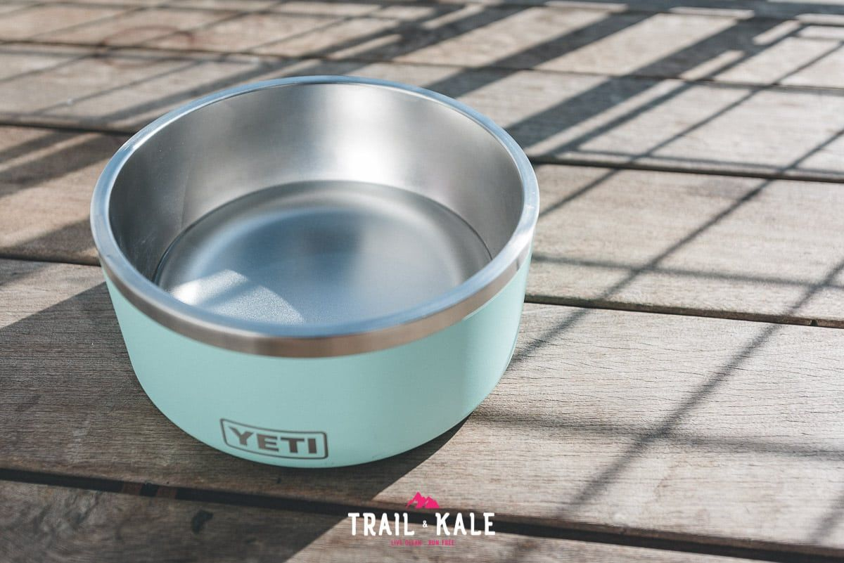 YETI Boomer Dog Bowl Review trail dogs trail and kale wm 5