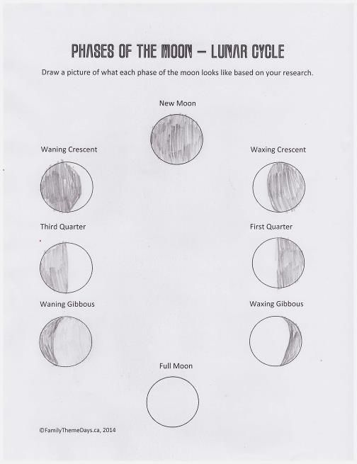 Moon Phases Worksheet Free Printable Science In 2018 Pinterest