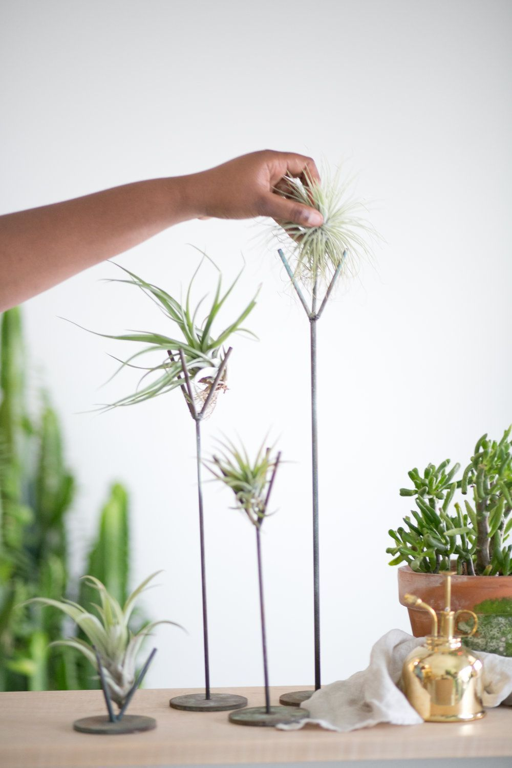 Weathered Turquoise Air Plant Stands — The Zen Succulent | Durham's Neighborhood Plant & Gift Shop#air #durhams #gift #neighborhood #plant #shop #stands #succulent #turquoise #weathered #zen