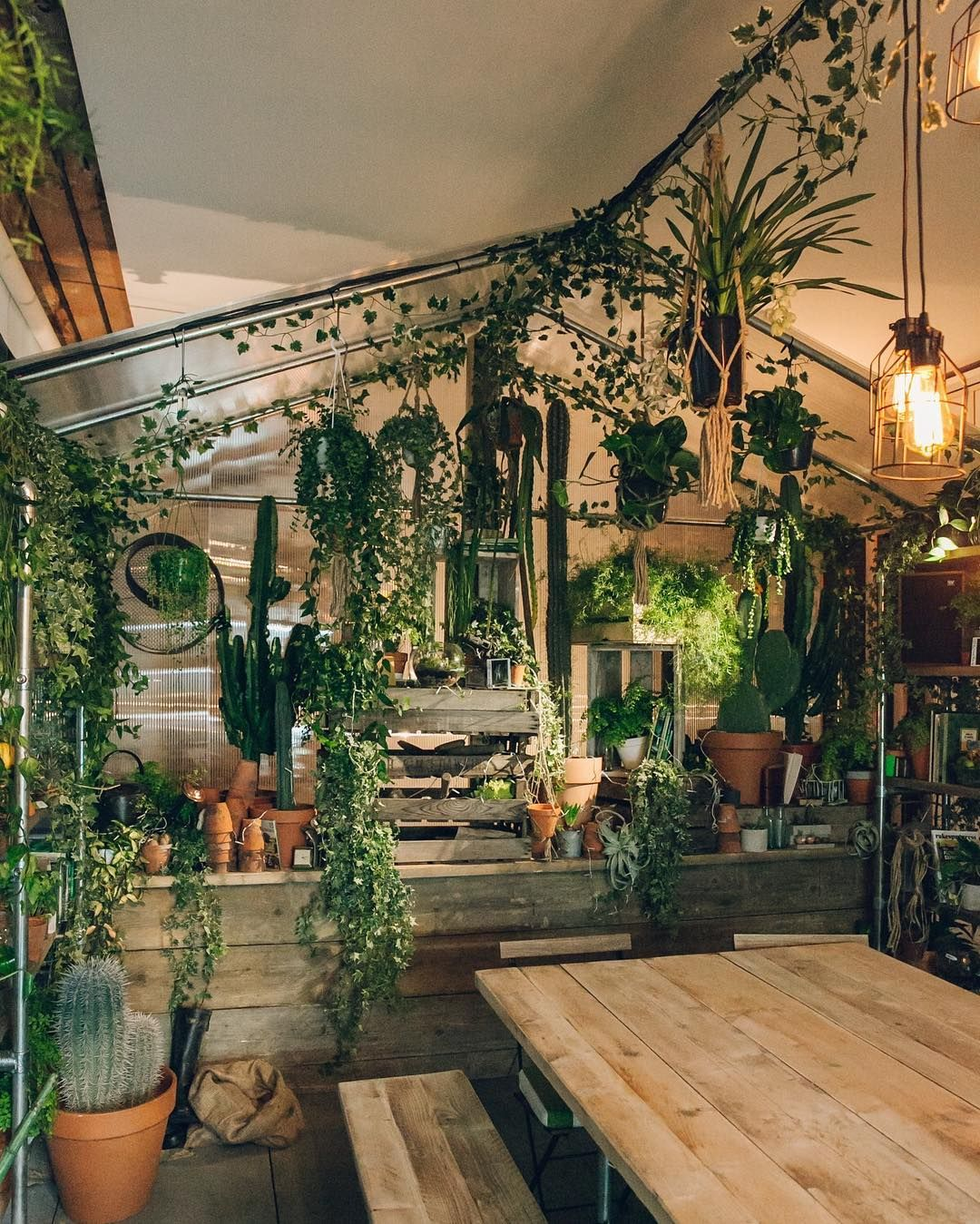 The Actual Indoor Green House From The @airbnb X @pantone