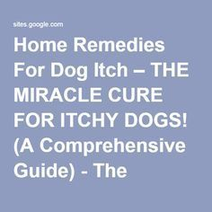 Home Remedies For Dog Itch – THE MIRACLE CURE FOR ITCHY DOGS! (A Comprehensive Guide) - The Fastest Poodle -- TheFastestPoodle