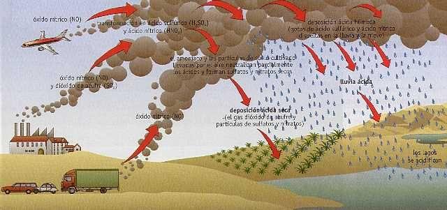 Figura 10 8 > Deposición ácida Lluvia Tercer mundo