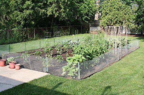 25+ Ideas for Decorating your Garden Fence (DIY) Vegetable garden
