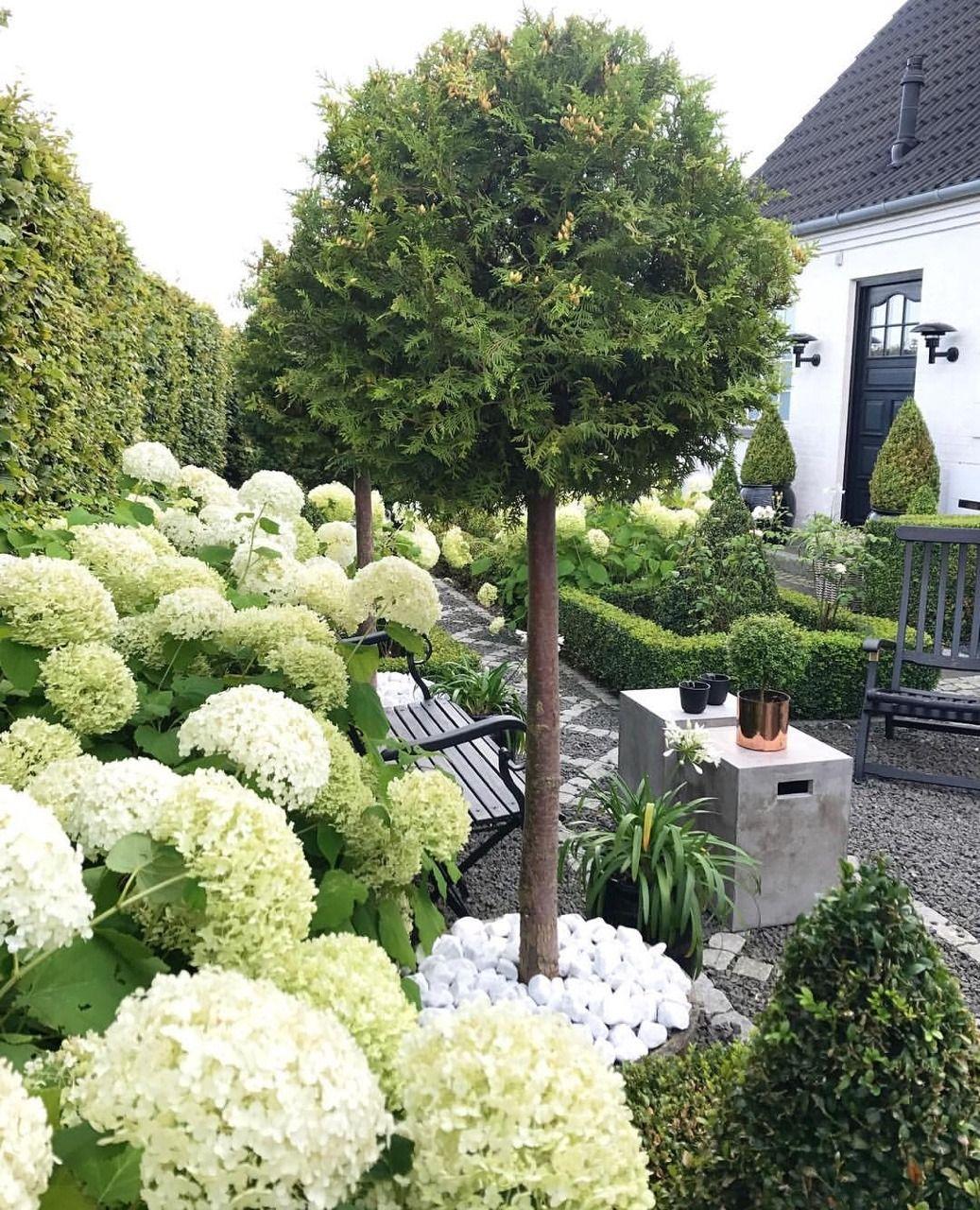 Idee Jardin Hortensia | Bouquet Nature Pointe De Bordeaux Fleurs En 2019